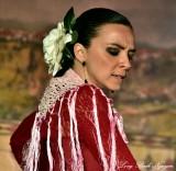 Flamenco Dancer 829