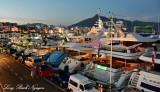 Yachts at Marbella Marina, Spain
