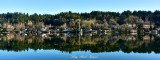 Reflection on Lake Sammamish Washington 057