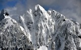 Red Mountain Washington 310
