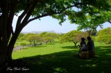 Enjoying the view from Punchbowl Crater, Honolulu Hawaii 057