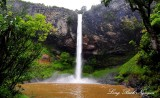 Bridal Veil Falls North Island New Zealand 625