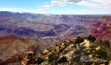 Grand Canyon National Park Colorado River from Desert View Watchtower Arizona 422