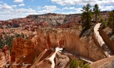 Sunset Point Bryce Canyon National Park Utah 528