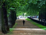 Jogging in Green Park London 325