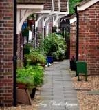 Private Garden in Blandford Forum England 006