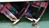 Side Wheel Paddle on Eureka San Francisco Maritime National Historical Park 461