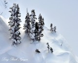Winter Wonderland on Mount Jupiter of the Olympic Mountains 278