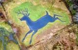 Rudolph The Red Nose Reindeer Vashon Island 019