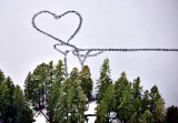 Heart in frozen Pine Lake Washington 530