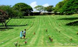 Relatives at National Memorial Cemetery of the Pacific, Punchbowl Crater, Honolulu, Hawaii 029
