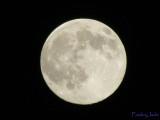 Moon - so full