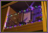 Mardi Gras Decorations are up 1-28-17