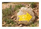 Flecha amarilla cerca de Sotés