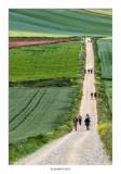 El camino se alarga hasta donde alcanza la vista