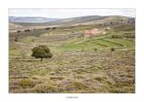 19/04/2016 · Mas de la Raya, terme d'Ares del Maestrat