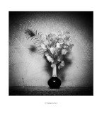 Gerro amb flors de plàstic i ploma