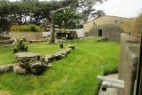 Part of the Oscar Jonesy Gorilla Family Preserve area. #2898