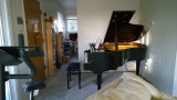 The Ritmuller GH-160R baby grand piano - 5' 3 (cellphone pics)