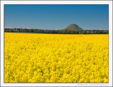 Rape Field and Ancient Volcano
