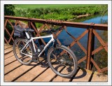 The Storck Crosses the Bridge