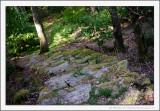 Hidden Steps
