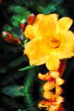 DSC_3549-1-2-2.jpg