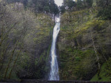 Horsetail Falls to Oneonta Trail in the Columbia Gorge, Oregon Side 2014 04 (Apr) 08