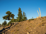 What an adventure! Lots of off-trail hiking on Mt. Hood, Oregon, U.S.A. 2014 10 (Oct) 03