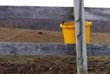 Yellow Horse Bucket