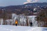 Two Skiers Enjoying the Park