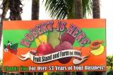 Florida City, The Everglades, South Beach
