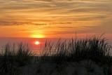 December Dune Sunrise