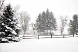 Backyard Blizzard of 2016