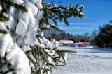 Heavy Snow on the Farm