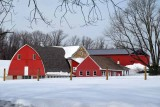 The Red Barns