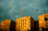 Bronx Sun
