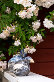 Honey-roses and birdies