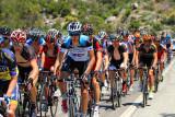 The Peloton on a 6 mile, 4000' climb
