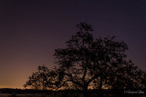 Nightfall under a blanket of stars