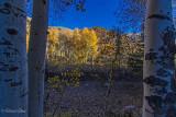 Aspen Gateway