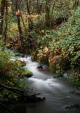 Metzgur Creek