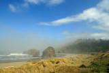 Fog-shrouded morning