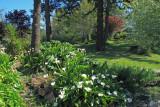 Spring on the Oregon Coast