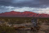 Clearing Storm, Mohave National Preserve