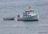 Captian Andy, Barbara Frost ship, Machias Seal Island, ME, 7-12-15, Jp_2191.JPG