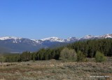 Mountains, Leadville, CO, 06_12_2016_Jp_17966.JPG