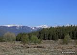 Mountains, Leadville, CO, 06_12_2016_Jp_17972.JPG