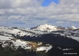 Mountains, Rocky Mt. NP, CO, 6_14_2016_Jp_18967.JPG