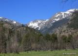 Mountains, Rocky Mt. NP, CO, 6_15_2016_Jp_19351.JPG